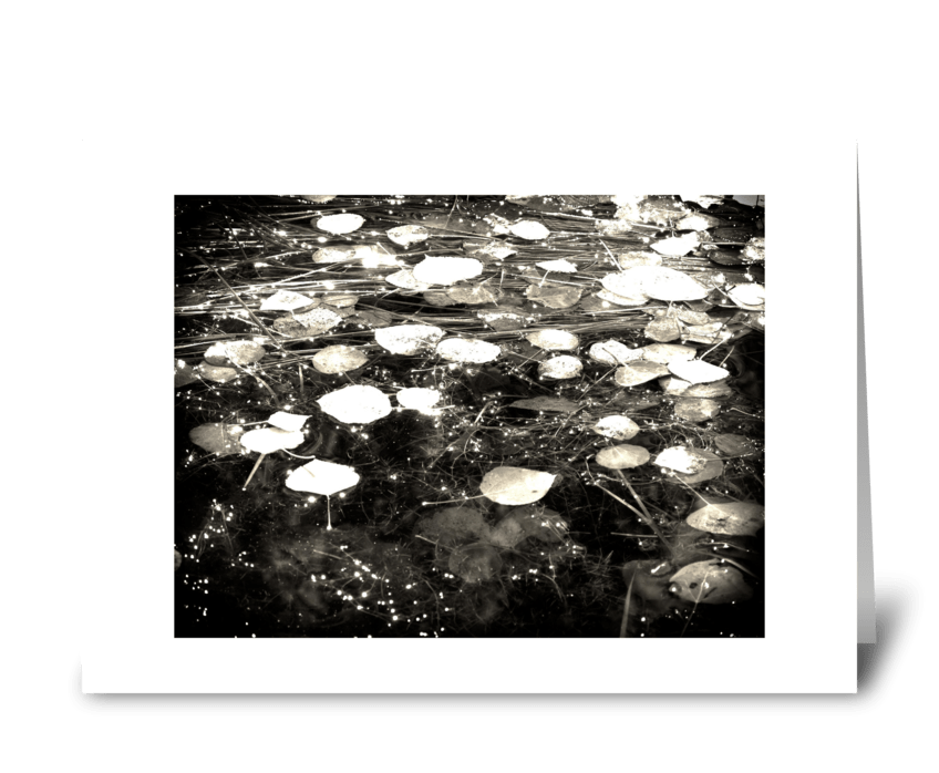 Drops Like Stars greeting card