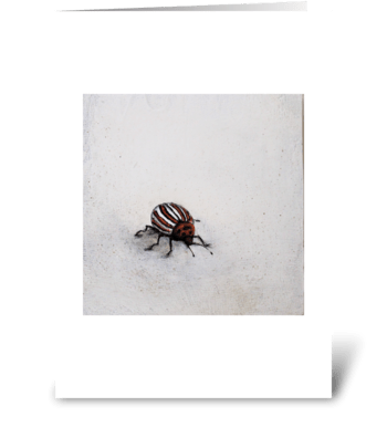 striped beetle greeting card
