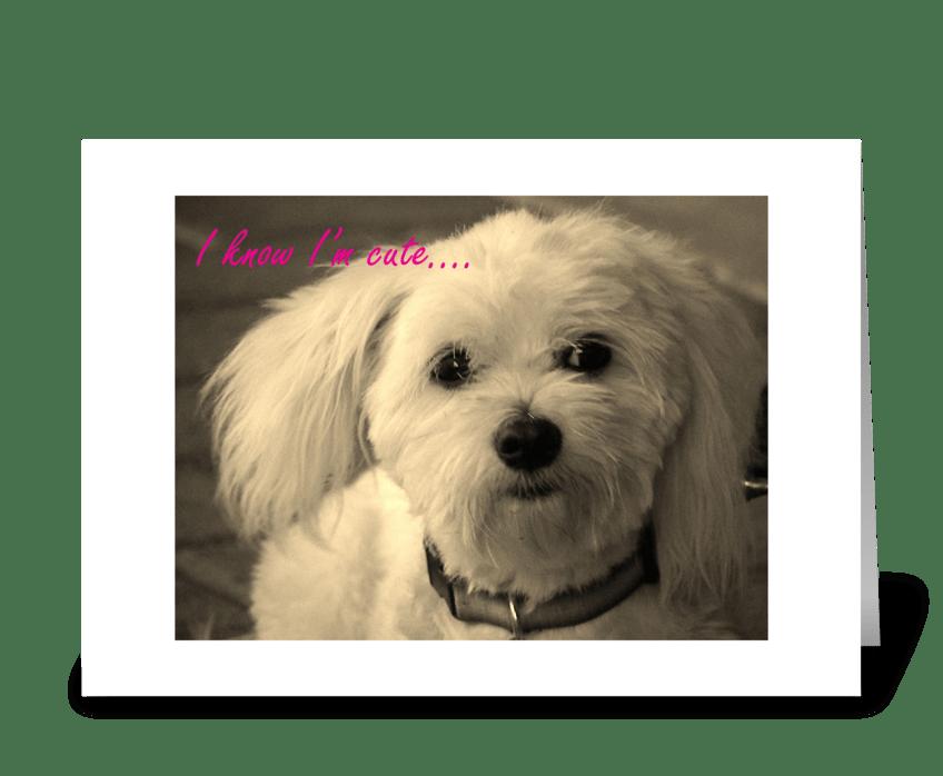I'm Cute! greeting card