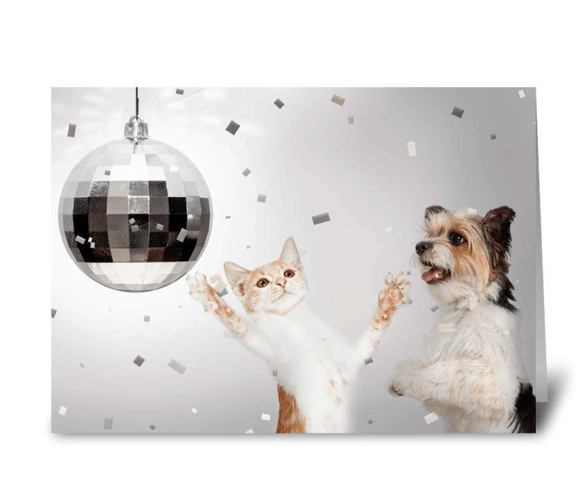 Dog and Cat New Years Celebration Party greeting card