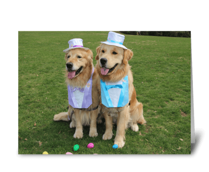 Golden Retriever Egg-Sighting Easter greeting card