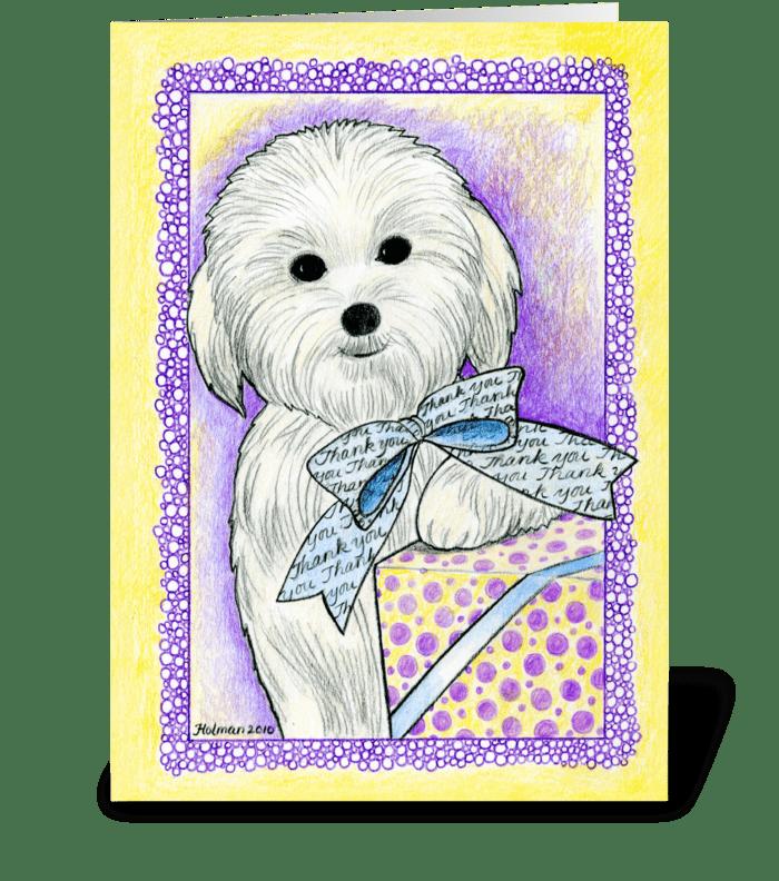 Coton de Tulear Thank You! greeting card