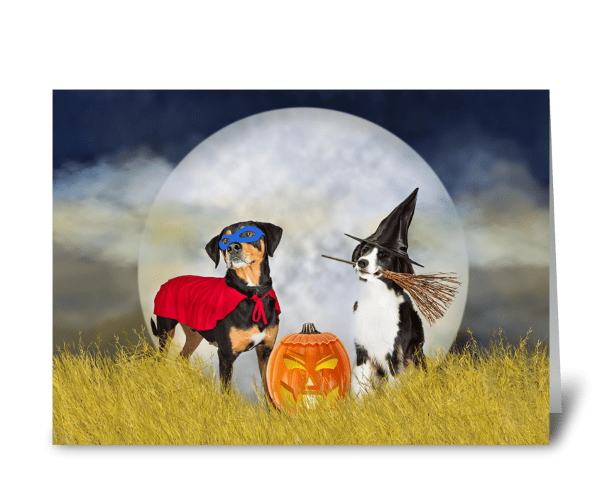 Funny Dogs Trick-or-Treat on Halloween greeting card