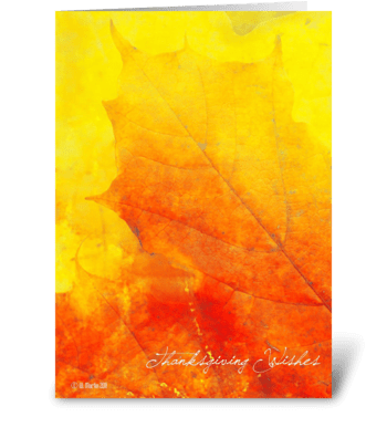Fall Leaf Thanksgiving Card greeting card