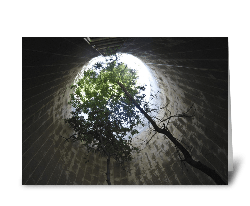 Tree In A Silo greeting card