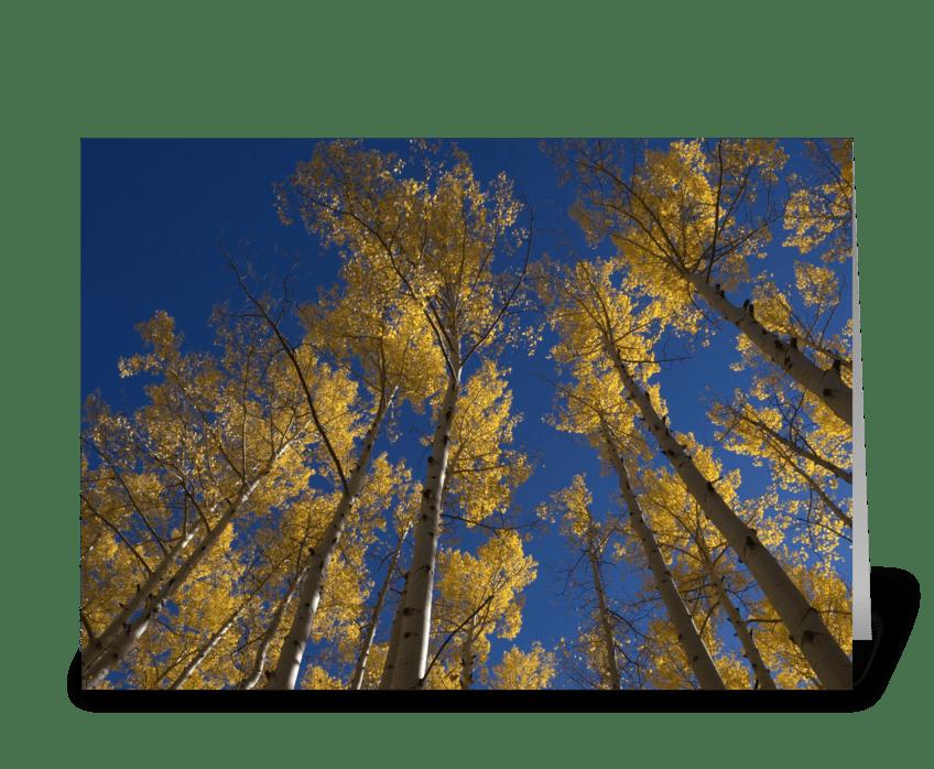 Fall in Colorado greeting card