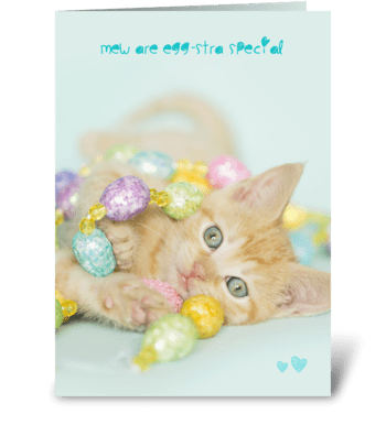 Eggstra Special Kitten Easter Card greeting card