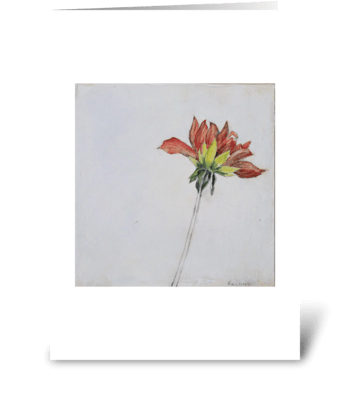 dahlia bud greeting card