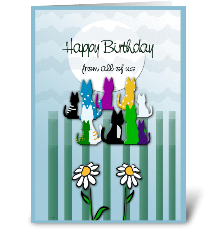 Colorful Kitties, Birthday Wish greeting card
