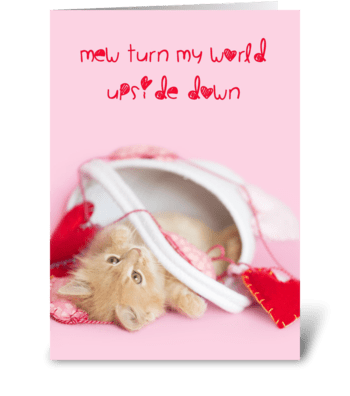 Kitten World Upside Down greeting card