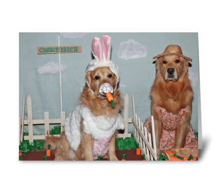 Golden Retriever Hoppy Easter greeting card