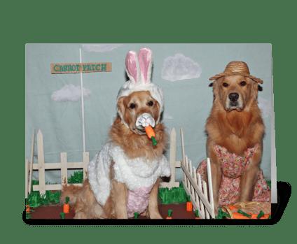 Golden Retriever Hoppy Easter greeting card