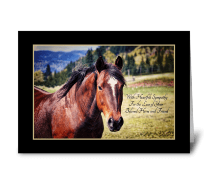 Pet Sympathy Loss of Horse Beautiful Bay greeting card