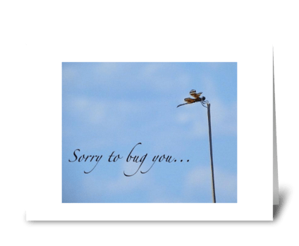 Sorry to bug you... greeting card