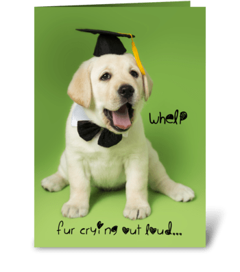 Whelp Congratulations Graduate Puppy greeting card