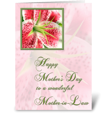 Mother-in-Law, Stargazer Lily greeting card