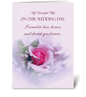Pink Rose Wedding Anniversary For Wife greeting card