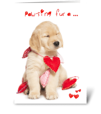 Pawsing for a KISS Puppy Valentine greeting card