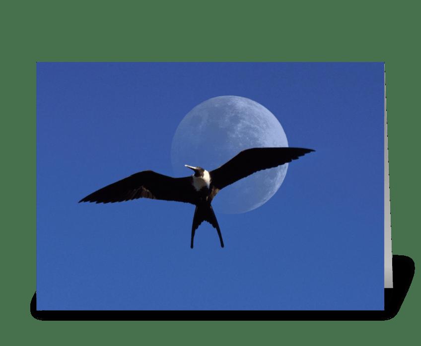 Frigate Moon greeting card