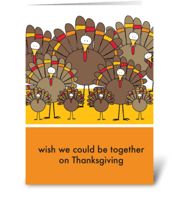 Thanksgiving Turkeys greeting card