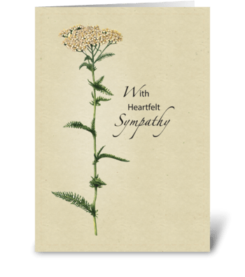 Tall Natural Wildflower Sympathy greeting card
