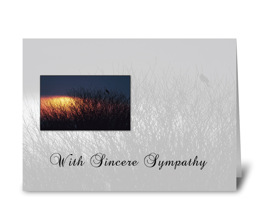 Sympathy Trees Bird greeting card
