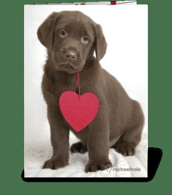 True Love greeting card