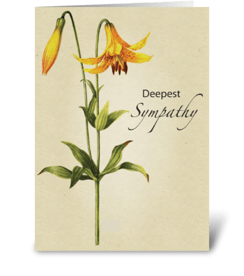 Lily Flower Sympathy Botanical greeting card