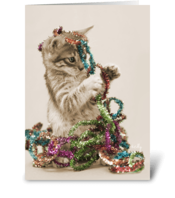 Can I Help Decorate? Christmas Kitten greeting card
