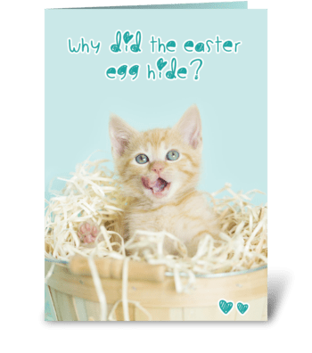 Hiding Easter Egg Kitten Joke greeting card