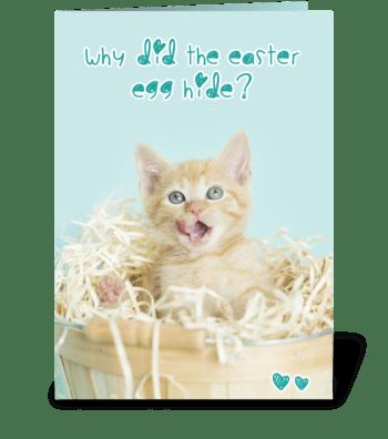 Hiding Easter Egg Kitten Joke greeting card