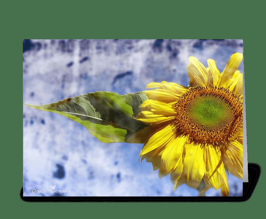 SunCatcher greeting card