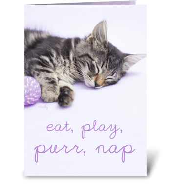 Birthday Play Purr Nap Kitten greeting card