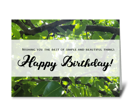Simple and beautiful birthday greeting card