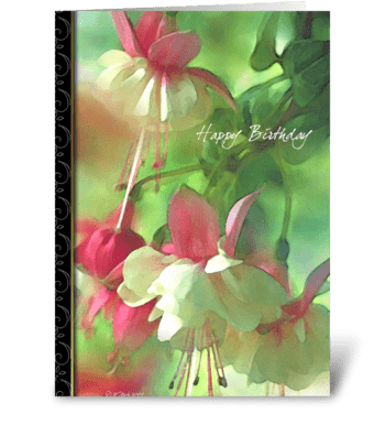Spring Blossoms Birthday Card greeting card
