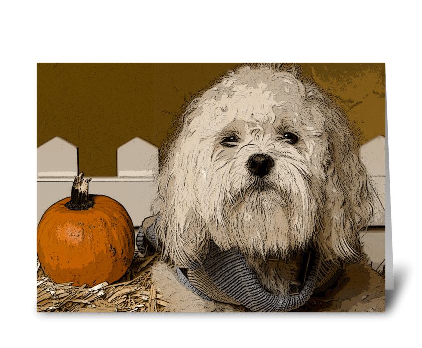 Fall Holidays & Cute Dogs greeting card