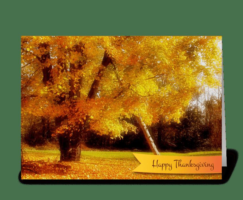 Thanksgiving Autumn Foliage greeting card
