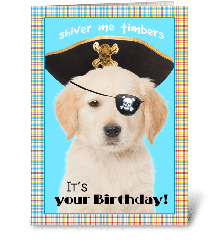 Shiver me Timbers Birthday Dog greeting card