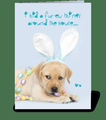 Yellow Labrador Retriever Easter Bunny greeting card