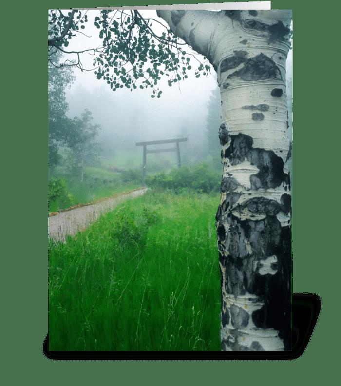 Aspen Gate Mist greeting card