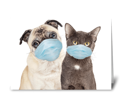 Funny Dog and Cat Protected from Germs greeting card