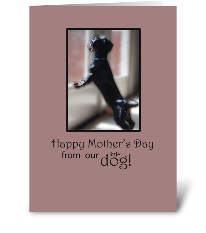 Mother's Day Thanks From Dog Watching greeting card
