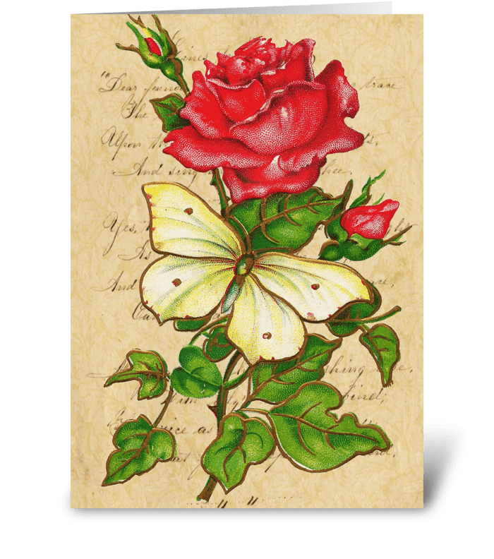 Vintage Rose & Butterfly greeting card