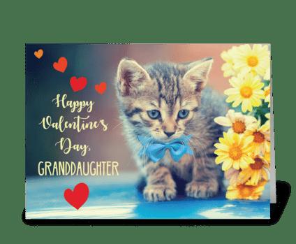 Granddaughter Love Valentine Kitten greeting card
