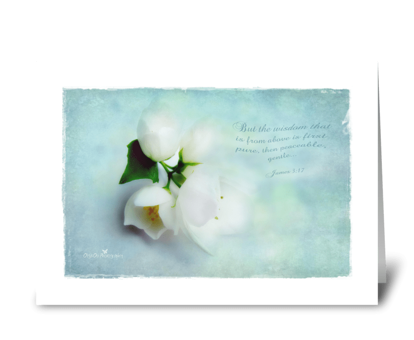 Wisdom from above greeting card