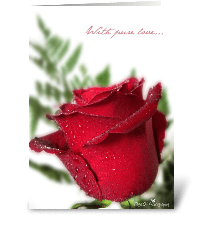 With pure love... greeting card