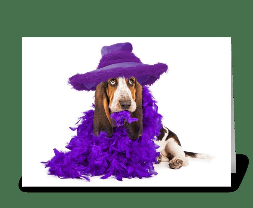 Funny Dressed Up Basset Hound Dog greeting card