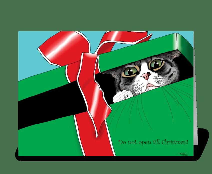 Do not Open till Christmas greeting card