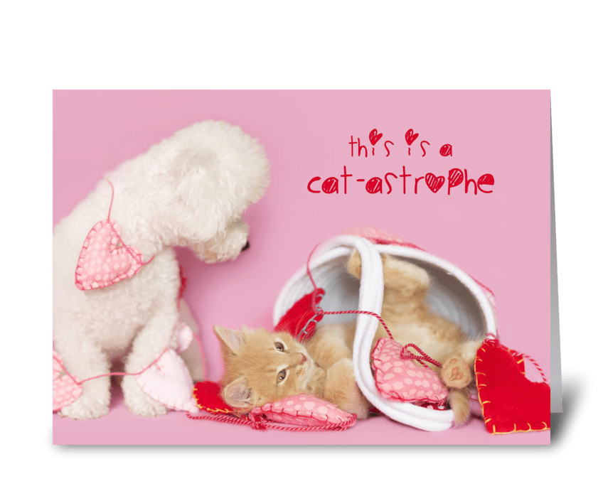 Puppy and Kitten Catastrophe greeting card