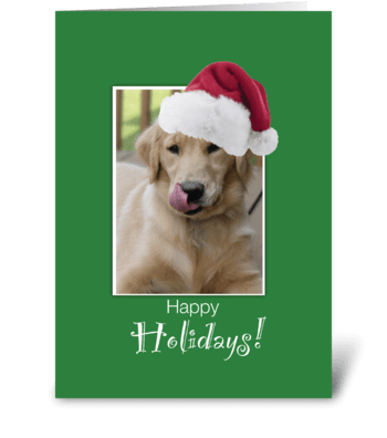 To Dog Walker at Christmas, Retriever greeting card